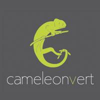 Caméléon Vert - Promotions & Rabais - Meubles Sur Mesure