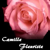 Camille Fleuriste - Promotions & Rabais - Fleuristes
