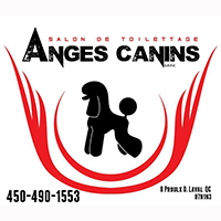 Toilettage Anges Canins - Promotions & Rabais - Animaux