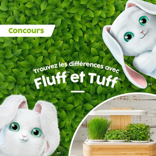 Concours Trouvez Les Différences Avec Cascades Fluff & Tuff!