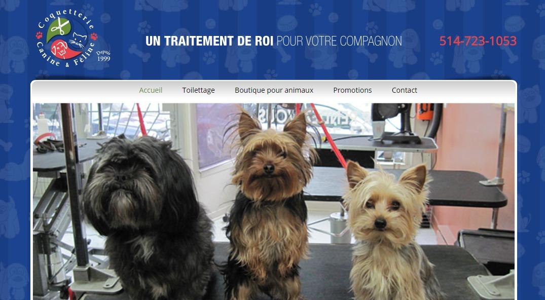 Coquetterie Canine Féline En Ligne